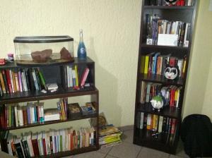 Biblioteca Esagui
