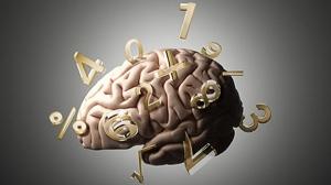 Cerebro matemático