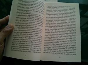 Pag 32-33